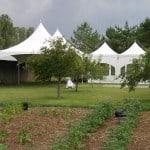 Backyard Tent Rentals