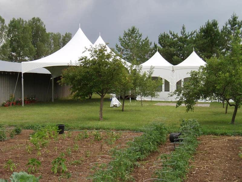 Tent Wedding In Backyard : backyard tent rentals backyard wedding rentals carterer tent rentals