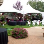 Backyard Wedding Rentals