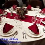 Cardinal Table Runner