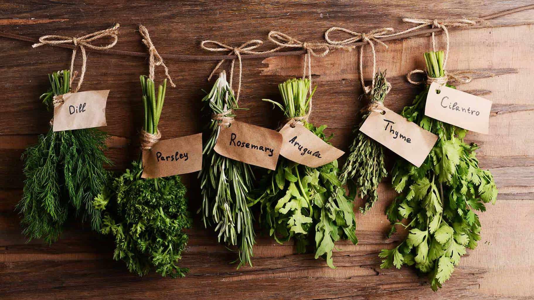 National More Herbs Less Salt Day | Blog | Front Range Event Rental