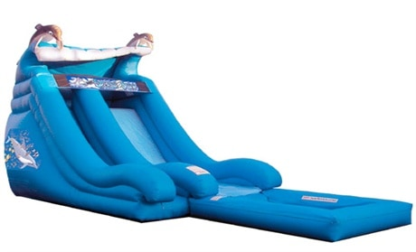 dolphin inflatable water slide front range event rental